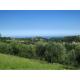 Properties for Sale_Restored Farmhouses _RESTORED FARMHOUSE NEAR THE SEA in the Municipality of Montefiore dell'Aso province of Ascoli Piceno in the Marche in Italy in Le Marche_22