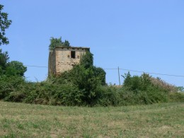Farmhouse to restore for sale in Le Marche - La Torre